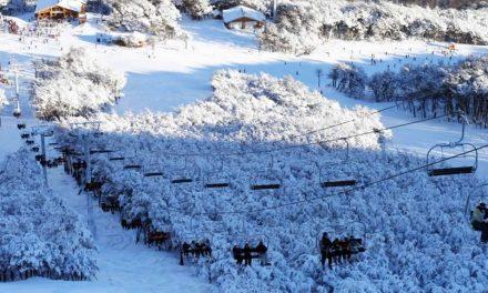 Preventa Cerro Catedral 2016 – Ote Travel Consulting