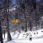 ¿Cuando volves al Camino del Bosque de Cerro Catedral – Catedral Alta Patagonia?…